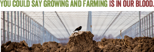 You could say growing and farming is in our blood.